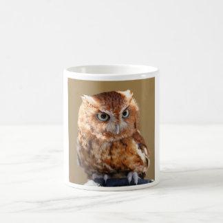 Brown-Eule Kaffee Tassen