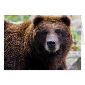 Brown-Grizzlybär Karte