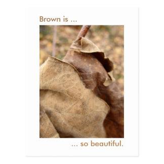 Brown ist schön postkarte