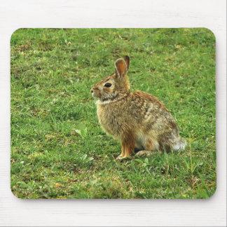 Brown-Kaninchen Mauspads