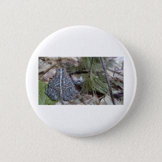 Brown-Kröte in den Brunnen, Maine-Wald - Foto Runder Button 5,1 Cm