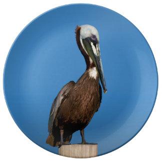Brown-Pelikan, der auf einem Posten hockt Teller Aus Porzellan