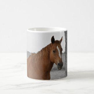 Brown-Pferd, B&W Hintergrund-Tasse Kaffeetasse