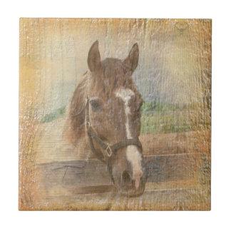 Brown-Pferd mit dem Halter auf altem Holz Keramikfliese