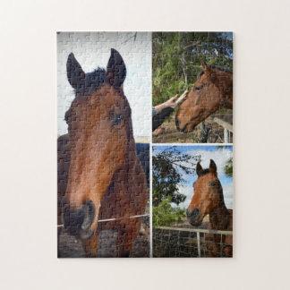 Brown-Pferde in einer Foto-Collage, Puzzle