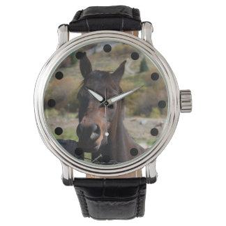 Brown-Pferdeuhr Uhr