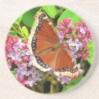 Brown-Schmetterling mit blauen Stellen auf Untersetzer