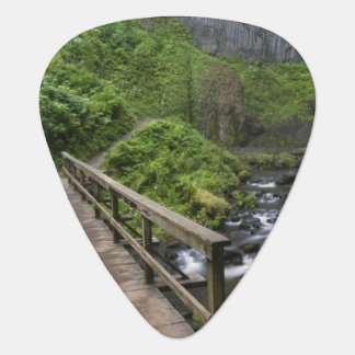 Brücke an Latourell Fällen, Columbia River Plektrum