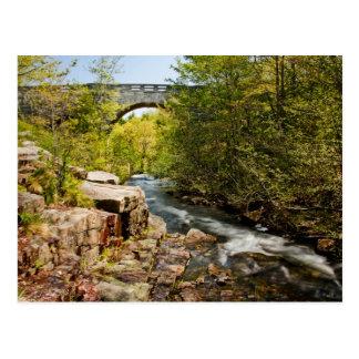 Brücke über Fluss Postkarte