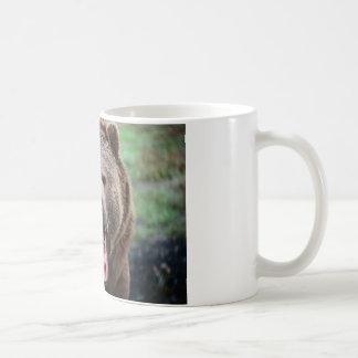Brüllender Grizzlybär Kaffeetasse