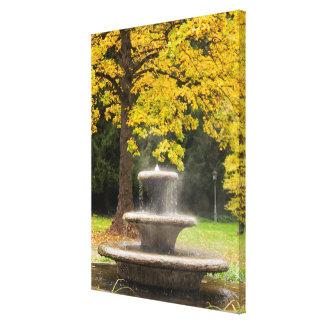 Brunnen durch einen Baum im Fall, Deutschland Leinwanddruck