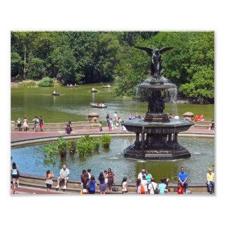 Brunnen und See im Central Park, New York City Fotodruck