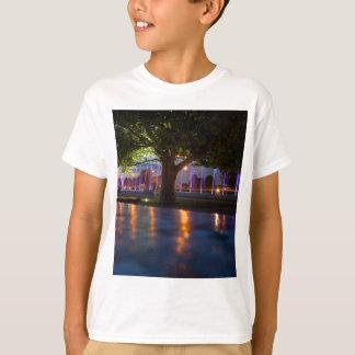 Brunnenshow - Warschau bis zum Nacht T-Shirt