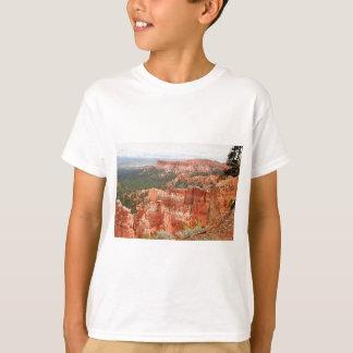 Bryce Schlucht, Utah, USA 9 T-Shirt
