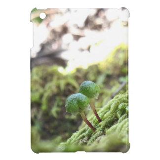 Bryophyta-Regenschirme iPad Mini Hülle