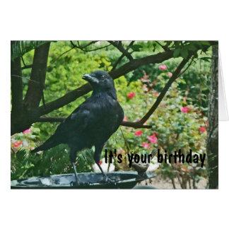 BT, Funy Krähen-Geburtstags-Karte