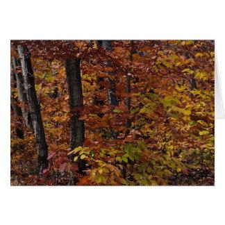 Buchen-Baum-Wald danken Ihnen Karte