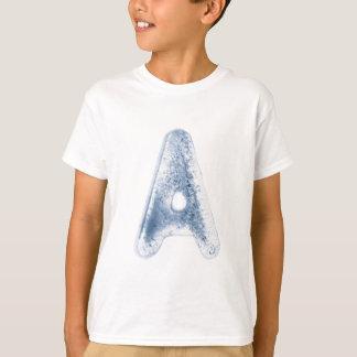 Buchstabe im Eis T-Shirt