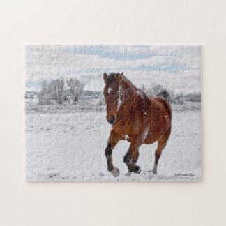 Bucht farbiges Pferd, das in das Puzzle