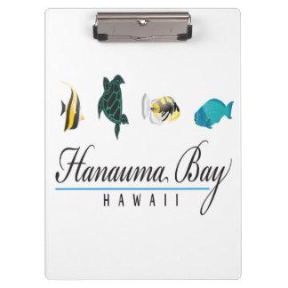 Bucht Hawaiis Hanauma