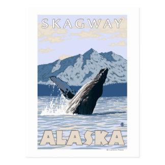 Buckel-Wal - Skagway, Alaska Postkarte