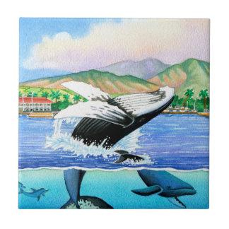 Buckel-Wale Keramikfliese