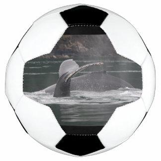 Buckelwale Fußball