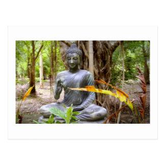 BUDDHA-   Buddhismus-Frieden Postkarte