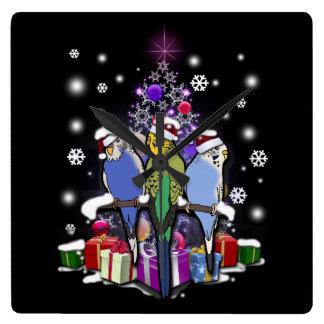 Budgerigars mit Weihnachtsgeschenk und Quadratische Wanduhr