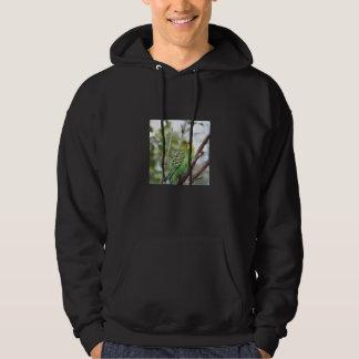 budgie hoodie