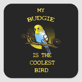 Budgie ist der coolste Vogel Quadratischer Aufkleber