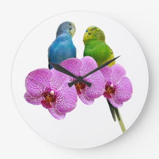 Budgie mit lila Orchidee Große Wanduhr
