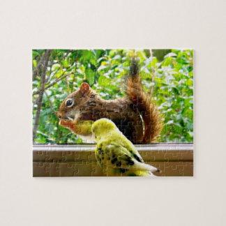 Budgie und rotes Eichhörnchen Puzzle