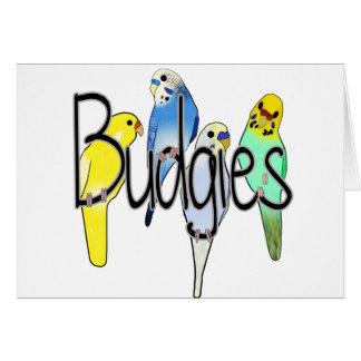 Budgies Karte