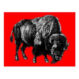Büffel-amerikanischer Bison-Vintager hölzerner Postkarte