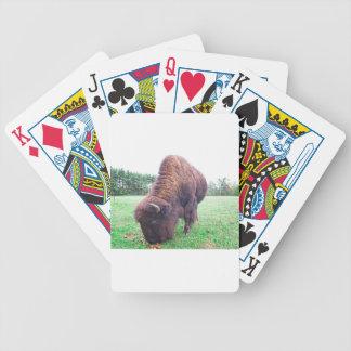 Büffel Bicycle Spielkarten
