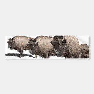 Büffel, Bubalus Autoaufkleber