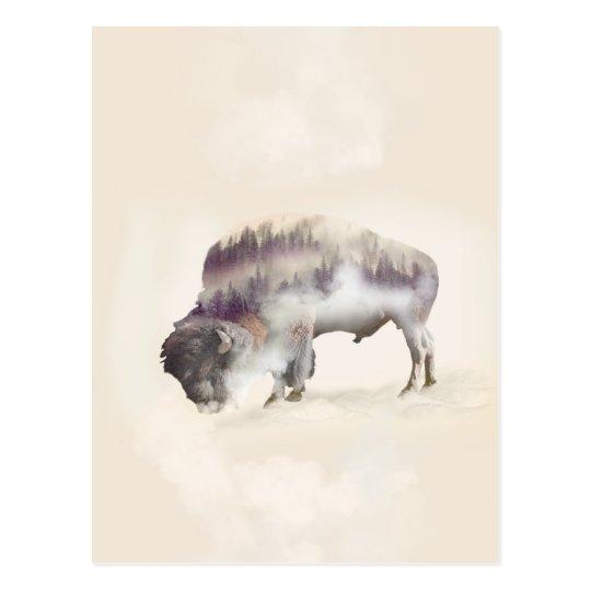 Büffel-doppelte Belichtung-amerikanische Postkarte