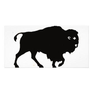 Büffel-Entwürfe Photokartenvorlage