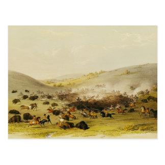 Büffel-Jagd, Einfassung, c.1832 Postkarte