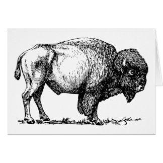 Büffel- oder Bisongrußkarte Karte