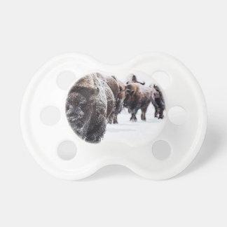 Büffel Schnuller