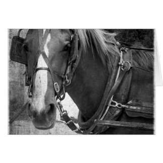 Buggy-Pferd am Hitching Posten Karte