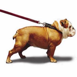 bulldog24r44444444444444 freistehende fotoskulptur