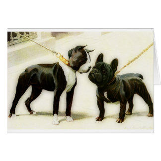 BULLDOGGE BOSTONS TERRIER&FRENCH KARTE
