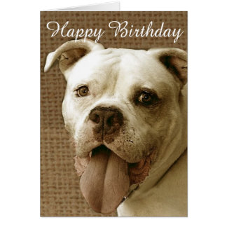 Bulldoggen-Grußkarte alles Gute zum Geburtstag Grußkarte
