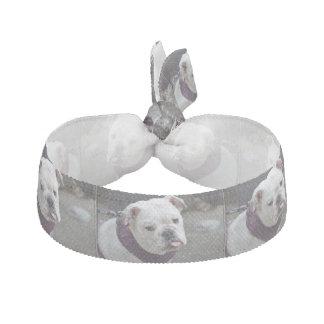 Bulldoggen-Hänselei Haargummi