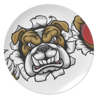 Bulldoggen-Kricket trägt Maskottchen zur Schau Teller