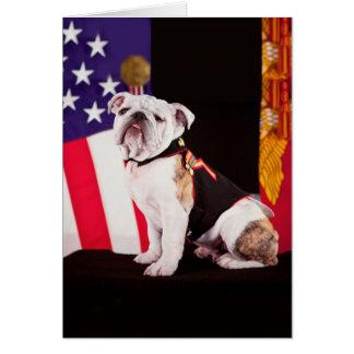 Bulldoggen-Marine-offizieller Maskottchen-Hund Karte