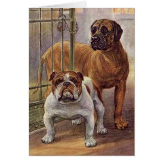 Bulldoggen-und Mastiff-Vintage Gruß-Karte Karte
